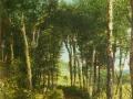 Woodland Scene, 1876
